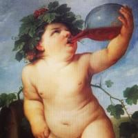 vin nature biodynamie nature&progrès biodyvin AB bio