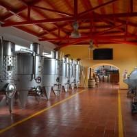 wine-664818_640